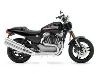 Harley Davidson XR1200 / XR1200 X