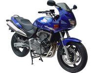 Honda CB 600 S Hornet