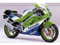 Kawasaki ZX 250 R